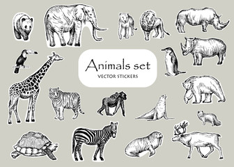 Vector pen style drawing. Different animals. Stickers design set.
