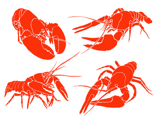 Graphical set of red lobsters isolated on white,vector sea-food illustration