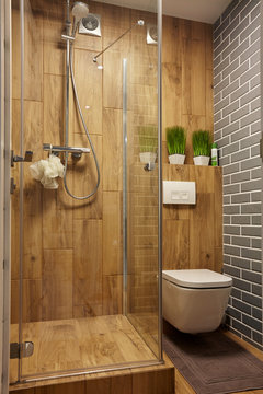 Brown tones bathroom with glass door shower, toilet and brick wall.And green plants