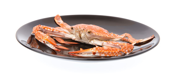 cooked crab prepared on black plate isolated on white background