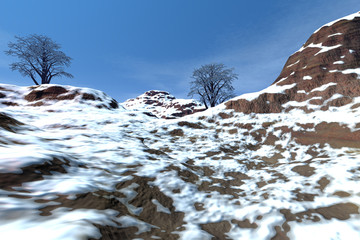 At the top of the mountain, a deserted landscape, snowy rocks, beautiful trees and a blue sky.