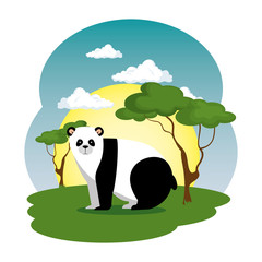 cute panda bear in the field scene