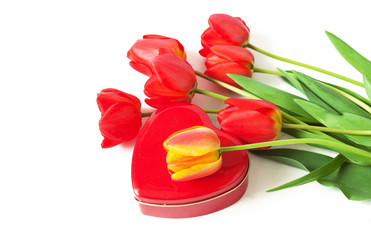 beautiful red tulips bunch and hearts ornament  isolated on white background