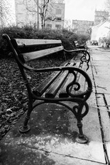 Street Photography - black and white bench after rain.