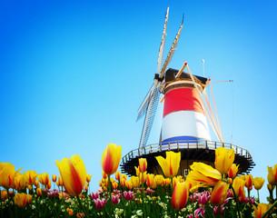 Windmill of Leiden
