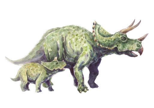 Family triceratops. Mother and child.