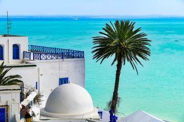 Tuinposter Tunesië Sidi Bou Said, Tunesien