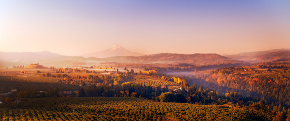 Wide aerial autumn sunrise panorama of the vineyards and orchards in the valleys below Mt Hood looking south towards the mountain