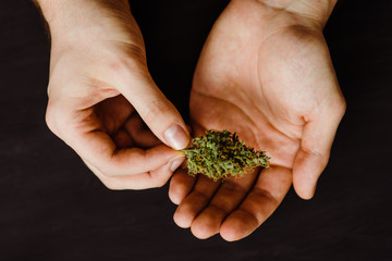 The concept of marijuana use. On a black background. top view . Cannabis bud and joint in the hands of a man.