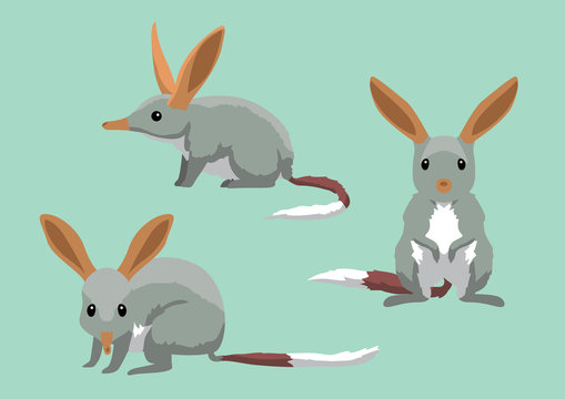 Cute Bilbies Cartoon Vector Illustration