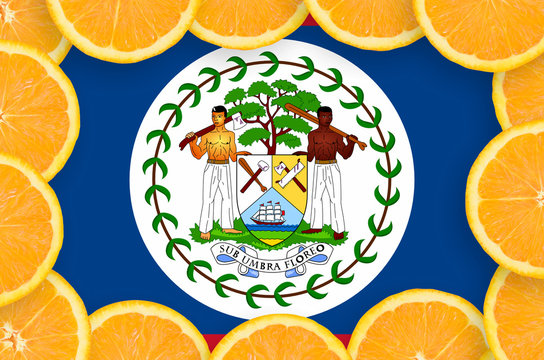 Belize flag  in fresh citrus fruit slices frame