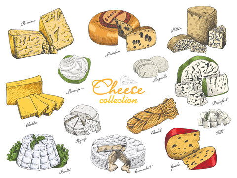 Vector set of different color cheeses in sketch style