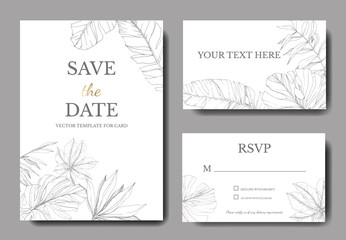 Vector Green leaf plant. Engraved ink art. Palm beach tree leaves. Wedding background card floral decorative border.