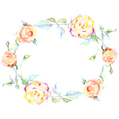 Orange rose. Floral botanical flower. Frame border ornament square.