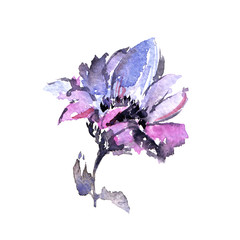 Single flower. Floral greeting card. Watercolor purple flower for wedding invitation decor.