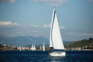 Wall Mural - Luxury holiday, Sailing boats participate in sail yacht regatta in Aegean Sea.
