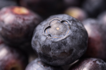 Delicious organic ripe blueberry, full frame and background
