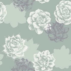 drawing succulents plant seamless pattern with green background