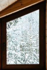 window with beautiful winter view