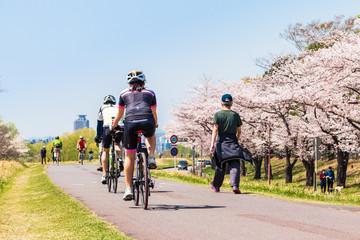 春の多摩川 サイクリングロード