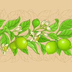lime vector pattern
