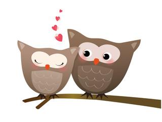 coppia di gufi innamorati