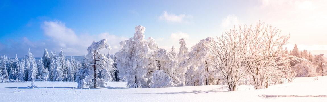 Winterlandschaft, Schwarzwald, Schwarzwaldhochstrasse