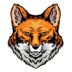 fox head hand drawn style