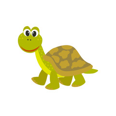 Cute turtle. Vector cartoon style illustration
