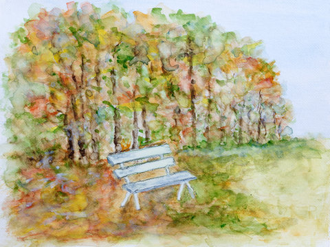 Autumn forest with white bench