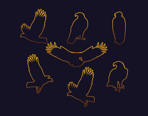 bald eagles birds golden silhouettes set poses