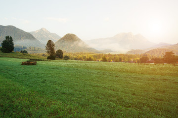 壁紙(ウォールミューラル) - Fantastic views of the morning field glowing by sunlight. Location resort Grundlsee Austria.