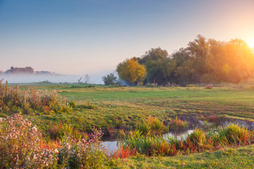壁紙(ウォールミューラル) - Fantastic foggy field in the sunlight. Location place Seret river, Ternopil.