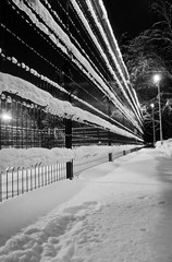 fence under the snow and street lamp in the winter park black and white
