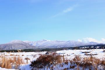 대한민국 제주에 있는 방목지의 겨울 풍경이다.