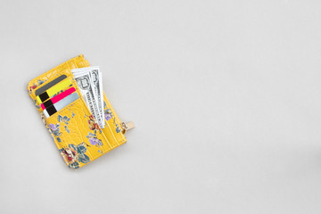 Woman wallet with dollar and bank cards on the grey background.