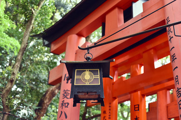 Chinese lantern hanging in front of Torii Gate