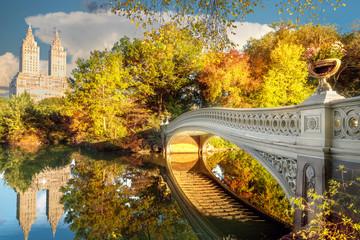 Bridge in Central Park in New York