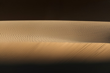 light and shadow make a beautiful abstract of this desert sand waves