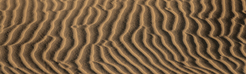 Abstract desert sand pattern shaped by low sunlight and wind formed ripples