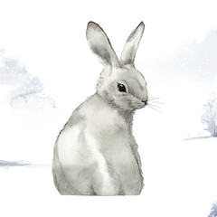 Wall Mural - Wild gray rabbit in a winter wonderland painted by watercolor vector