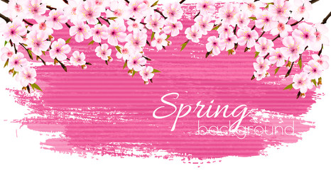 Wall Mural - Spring nature background with a pink blooming sakura. Vector.