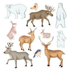 Wall Mural - Hand-drawn wild animal set