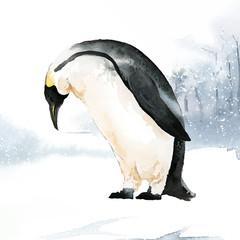 Wall Mural - Emperor penguin in the snow watercolor vector