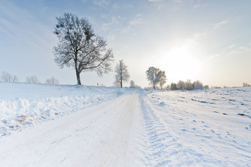 Beautiful snow winter landscape.Winter landscape.