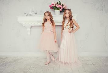 Best friends. Two cute little girls in dress posing on background.  Fototapete