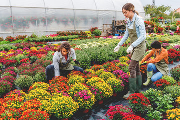 Florists in greenhouse