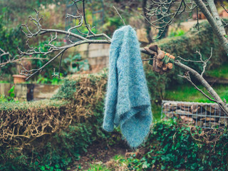 Woolen jumper hanging from tree