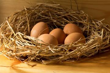 chicken eggs in straw on wooden background