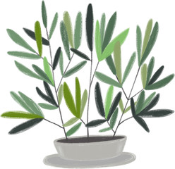 Hand-drawning illustration with plants. Green house plants illustrations. Cute pots for plants.